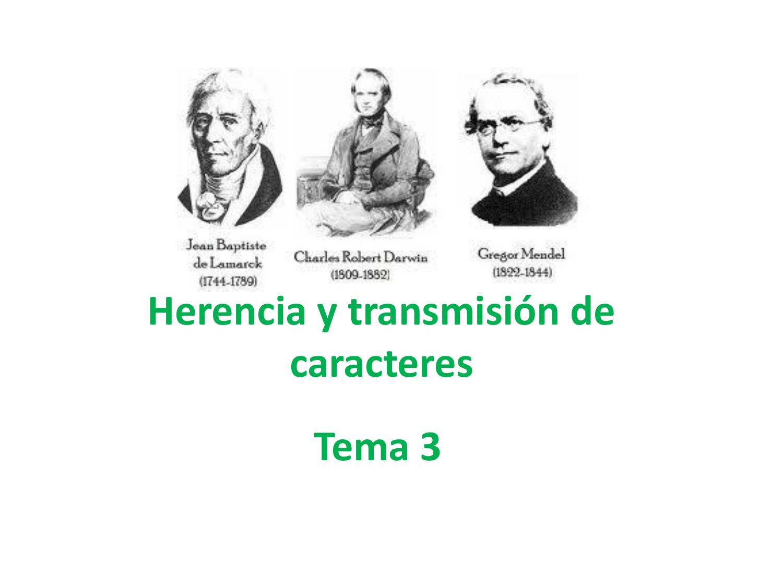 Herencia Y Transmisión De Caracteres