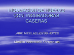 Incubación - WordPress.com