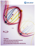 Ficha_Tilapia vFinal - Global Biotech Consulting Group