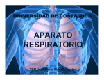 APARATO RESPIRATORIO - aemucr.files.wordpress